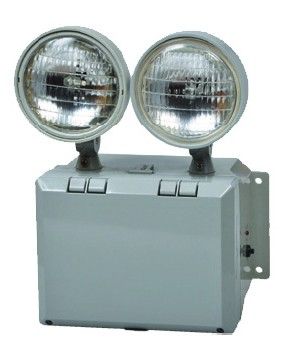 FULHAM OUTDOOR WET LOCATION DUAL HEAD LED EMERGENCY LIGHT